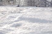 Fresh snow cover, daytime light at winter