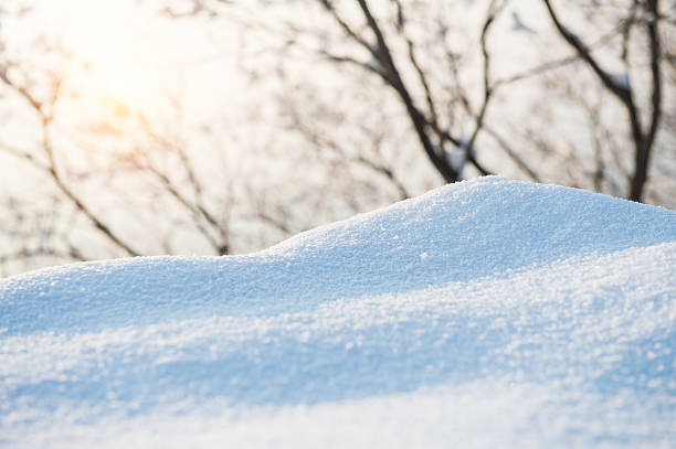 Fresh snow cover,winter stock photo