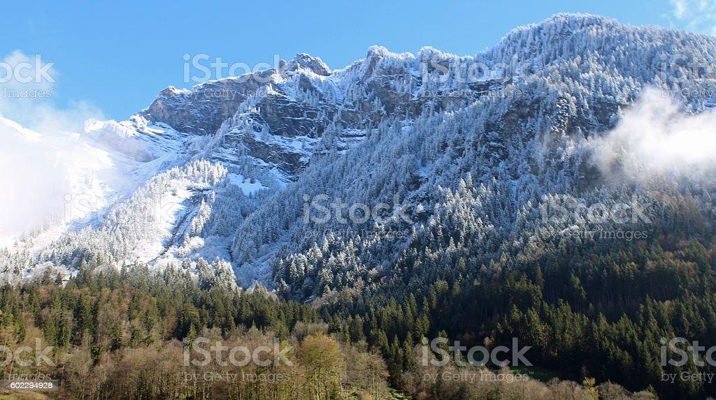 Fresh snow, Interlaken, Switzerland stock photo