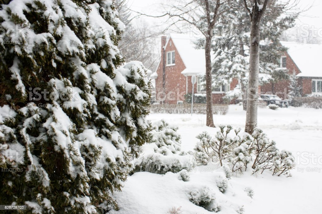 fresh snow on a suburb neighborhood stock photo