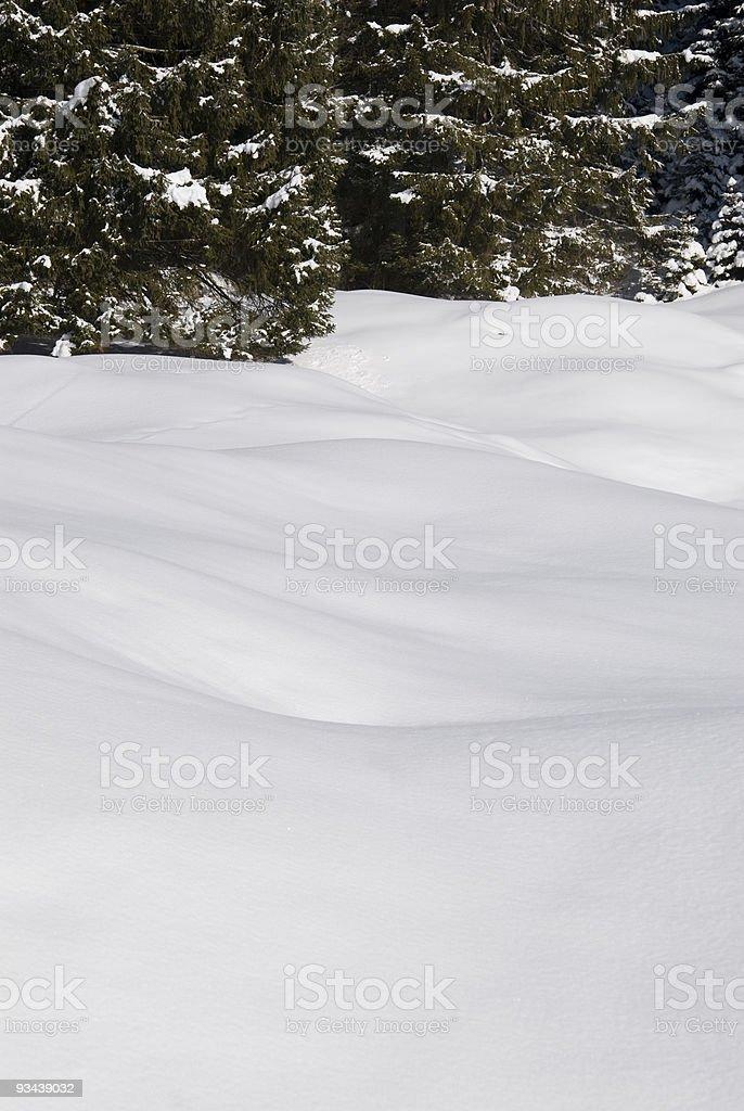 Fresh Schnee Lizenzfreies stock-foto