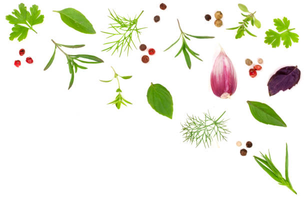 Fresh spices and herbs isolated on white background. Dill parsley basil thyme tartun peppercorns garlic. Top view stock photo
