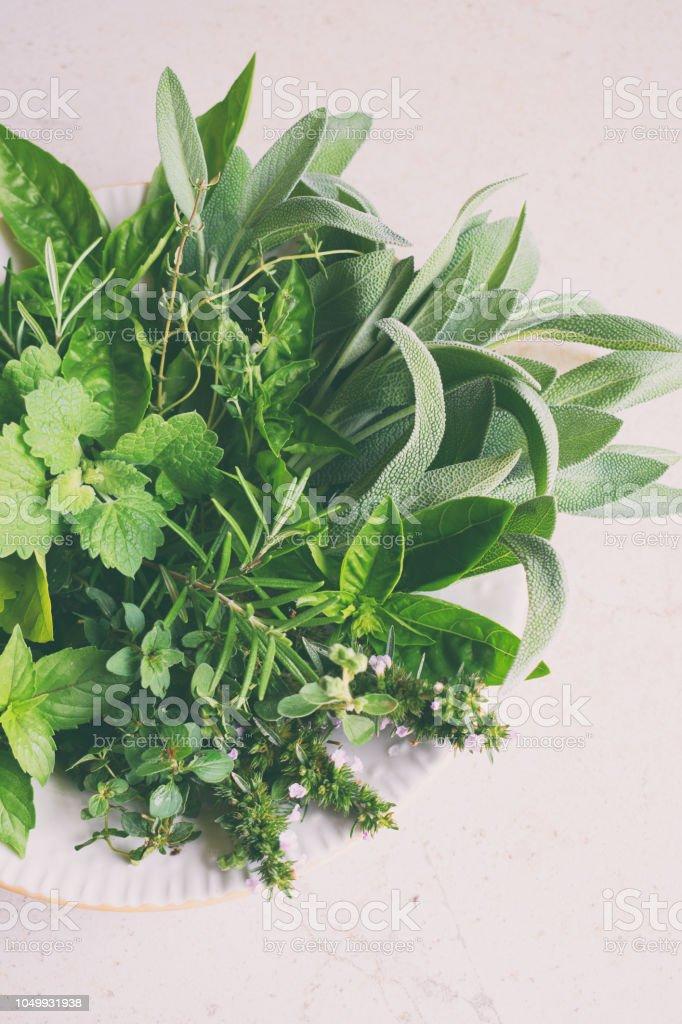 Frische Würzige Kräuter Und Heilpflanzen Trocknet Auf Weißem