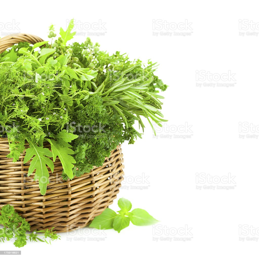 Fresh Spicy Herbs in Basket / isolated on white royalty-free stock photo
