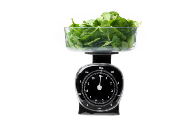 Fresh Spinach Leaf in Scale stock photo