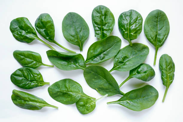 fresh spinach leaves on white background stock photo