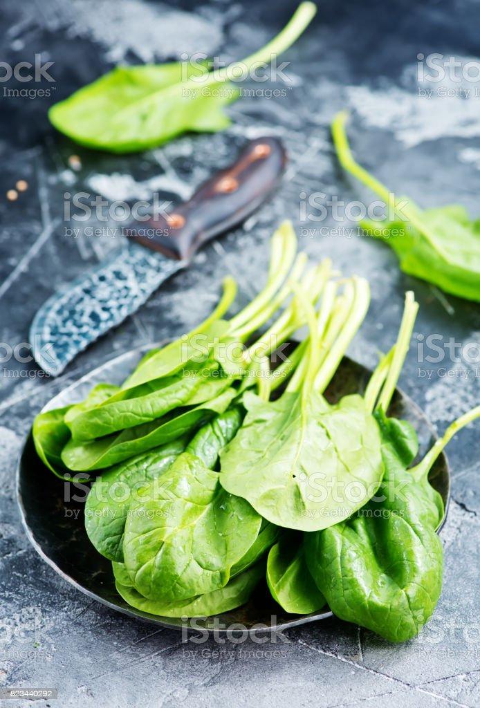 fresh spinach stock photo