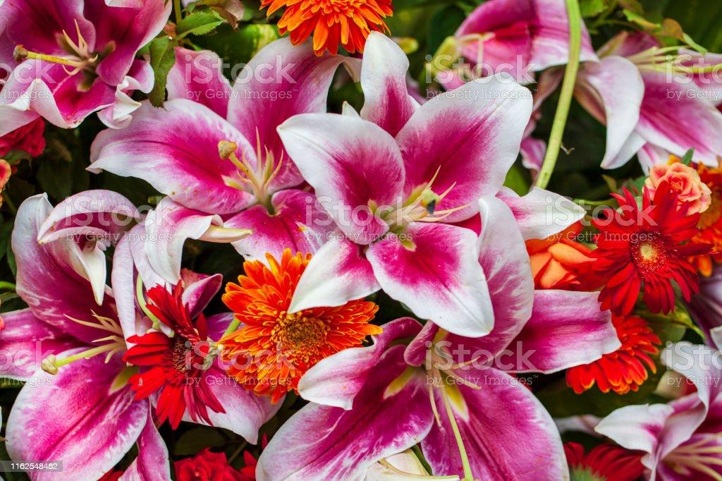 Fresh spring bouquet. Summer Background. Rich bunch of fresh flowers...