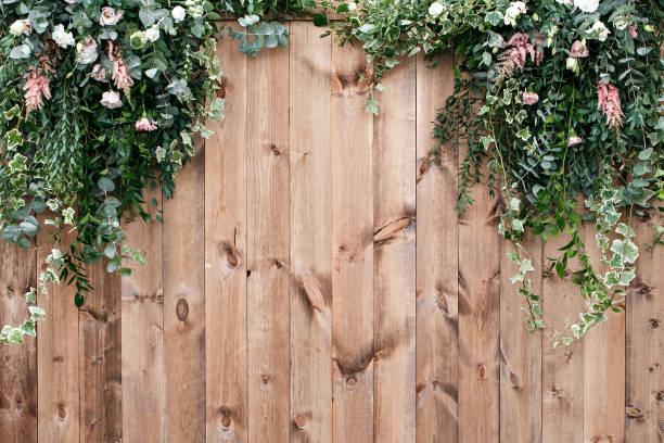frische frühlingsluft grün mit weißen blume und blatt pflanze über holzzaun hintergrund - holzblumen stock-fotos und bilder