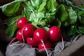 Fresh spring harvest of radishes healthy organic nutrition food in vintage wooden basket. Rustic style.