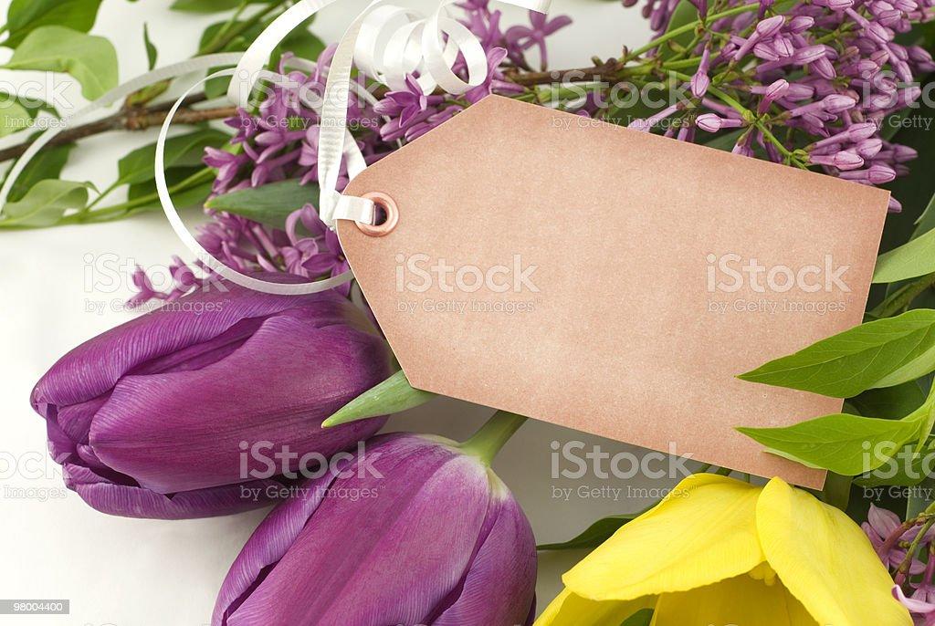 Tulipas de primavera frescos e etiqueta de presente foto royalty-free