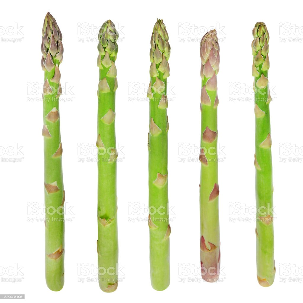 Fresh sprouts of asparagus. royalty-free stock photo