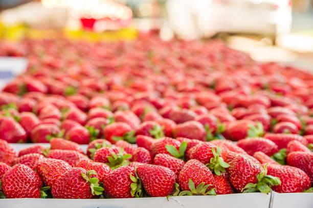 Fresh strawberries at the market stock photo