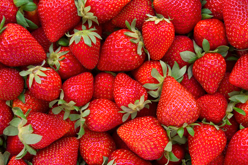 Directly above view of fresh red strawberries. All strawberries are clean with green leaves. There are lots of strawberries which are different sizes filling the frame of photograph.