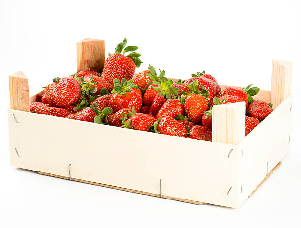 "Fresh strawberries in box, isolated on white background ""Fresh strawberries in box, isolated on white background. Studio shot."" fruit carton stock pictures, royalty-free photos & images"