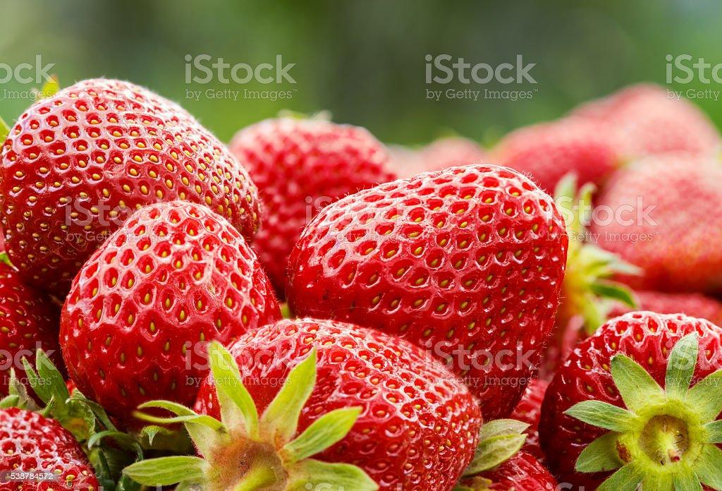 Fresh strawberry close-up, seasonal healthy food foto