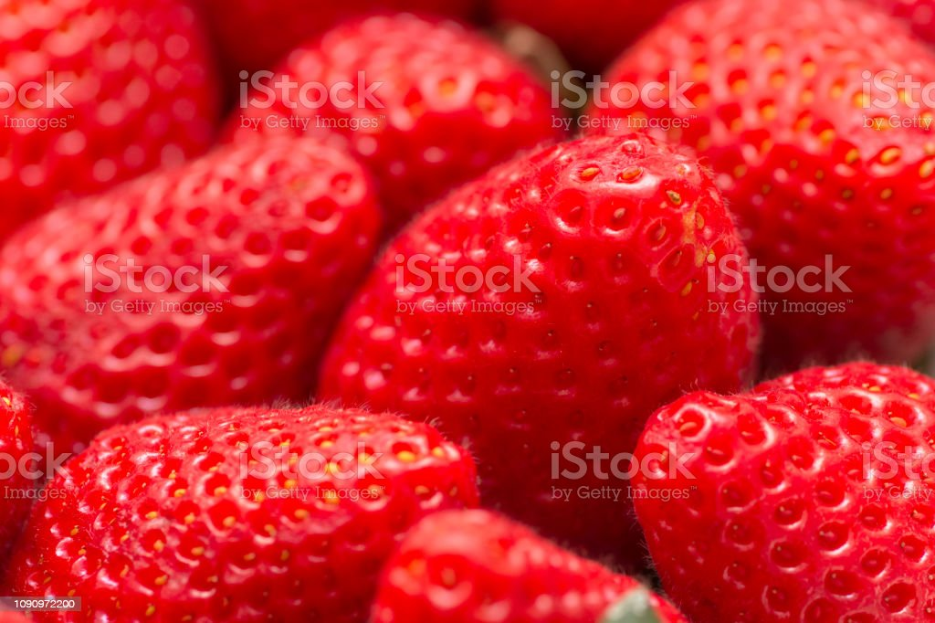 fresh strawberry fruit stock photo