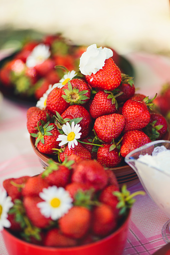 A Fresh Strawberry In A Bowl On A Table In A Summer Garden Is Adorned With Chamomile Flowers With A Low Key Stage Healthy Eating And Freshness Stock Photo - Download Image Now