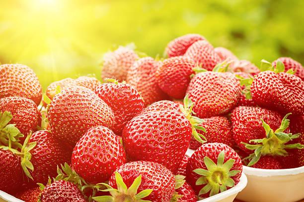 Frische Erdbeer in Sonnenlicht, Sommer-vitamin Obst – Foto