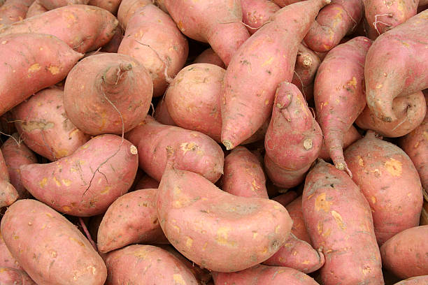 Fresh Sweet Potatoes Yams Sweet potatoes or yams on a farmer's market stall in autumn sweet potato stock pictures, royalty-free photos & images
