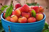 Freshly picked sweet ripe cherries in a bowl
