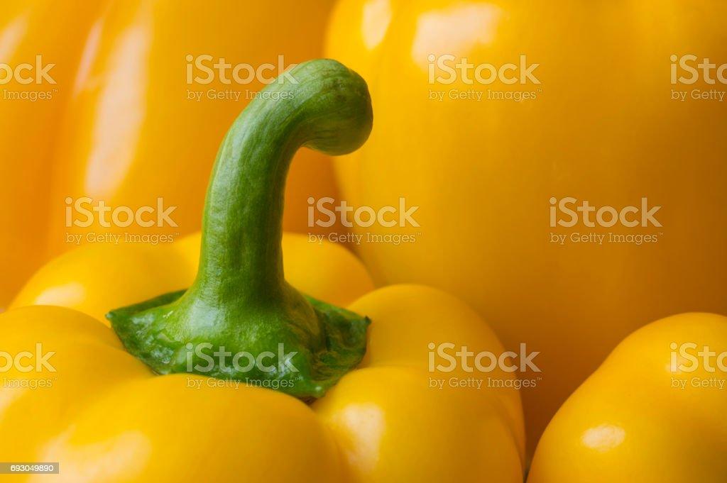 Fresh sweet yellow peppers stock photo