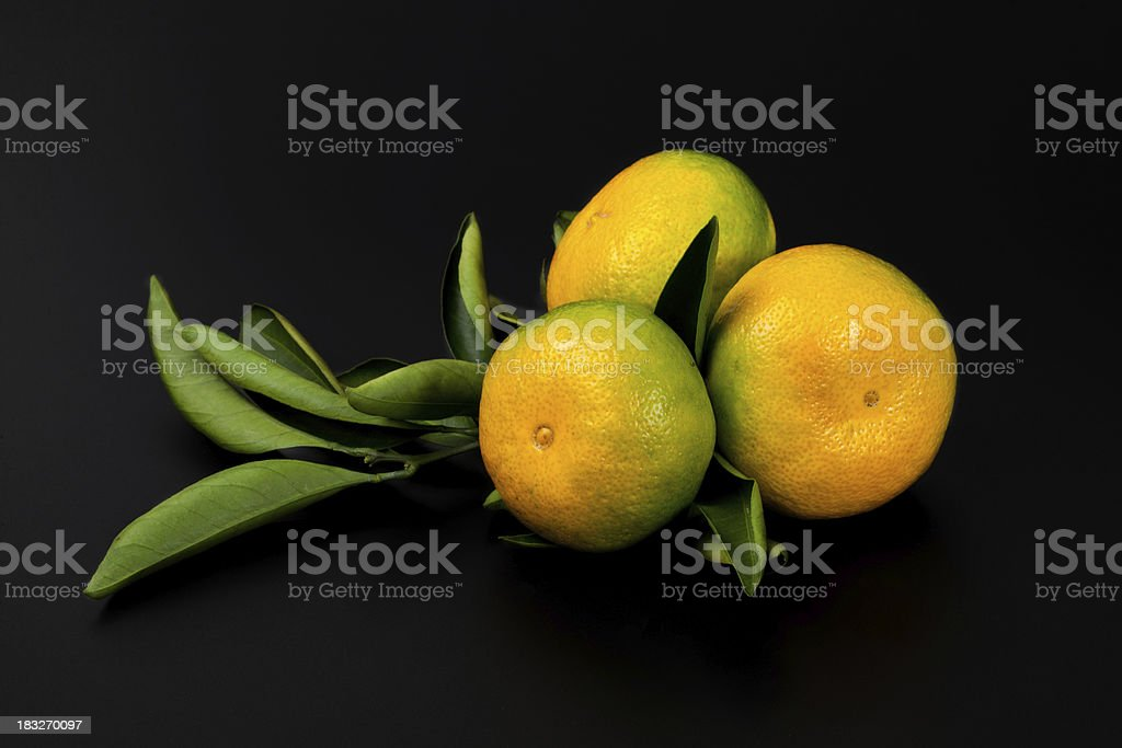Fresh tangerine fruits with green leaves. stock photo