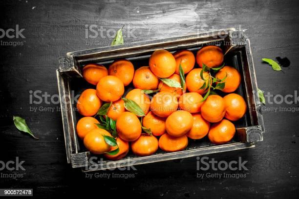 Fresh tangerines in a box.