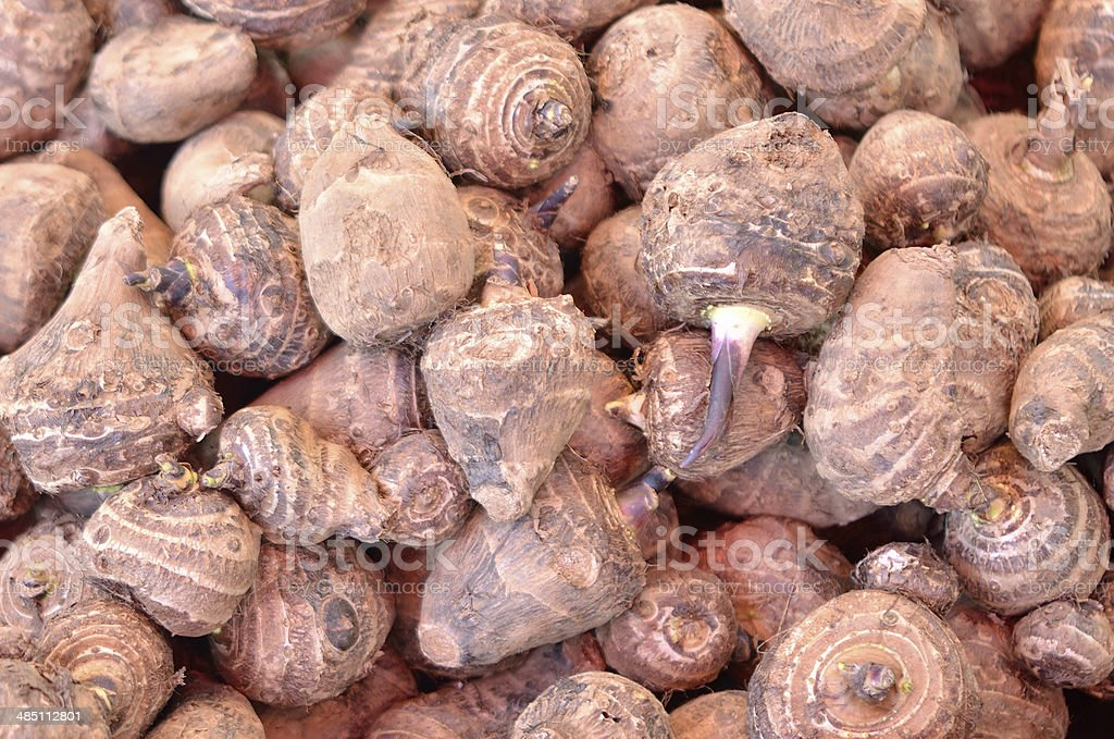 fresh taro root royalty-free stock photo