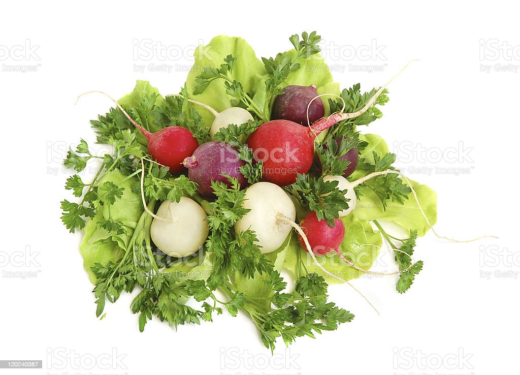 Fresh tasty greens and radish royalty-free stock photo