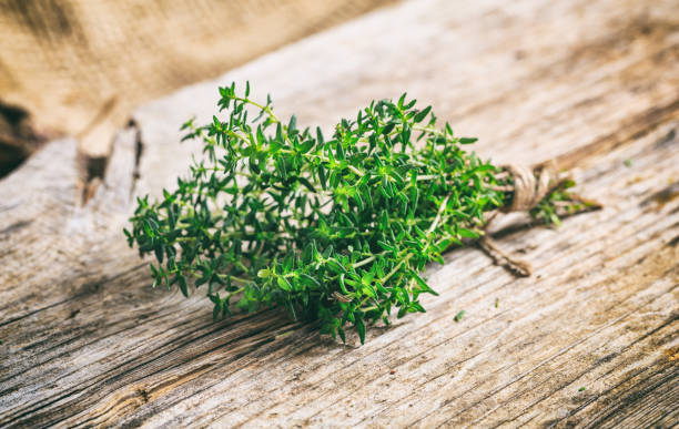 Fresh thyme on wooden background Fresh thyme twig on a wooden background thyme photos stock pictures, royalty-free photos & images