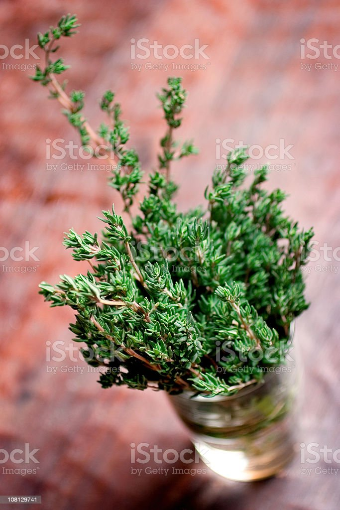 Fresh Thyme royalty-free stock photo