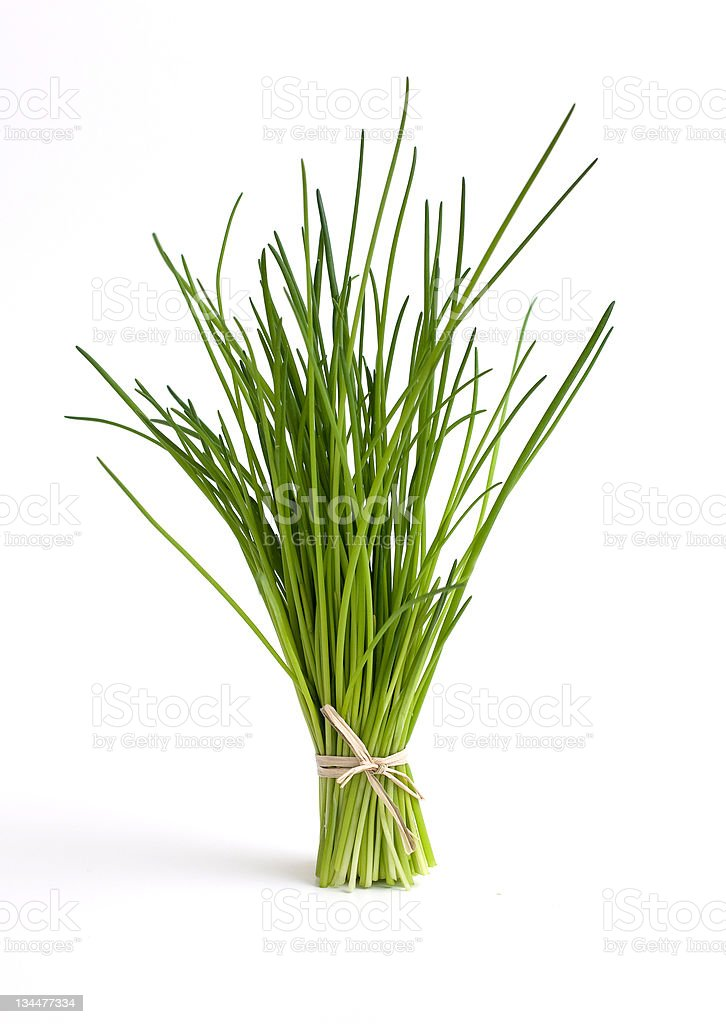 fresh tied chive stock photo