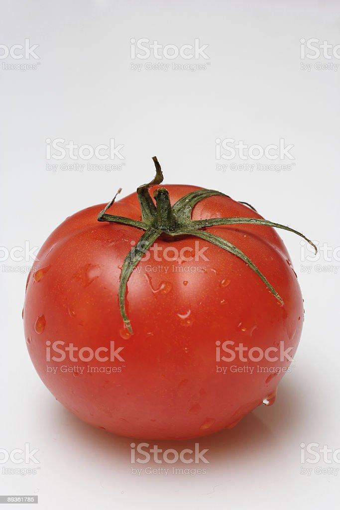fresh tomato royalty free stockfoto