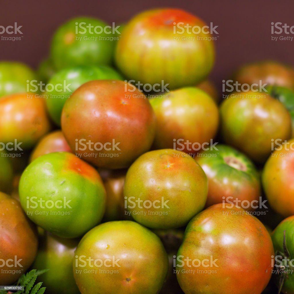 Fresh tomatoes  background. Organic Ripe various tomatoes in market. Harvesting concept'n stock photo