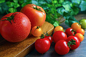 Fresh tomatoes isolated on wooden background. Harvesting tomatoes. Tomato with droplets of water.