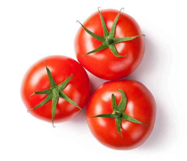 Fresh Tomatoes on White stock photo