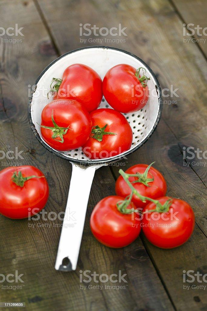 Frischen Tomaten. – Foto