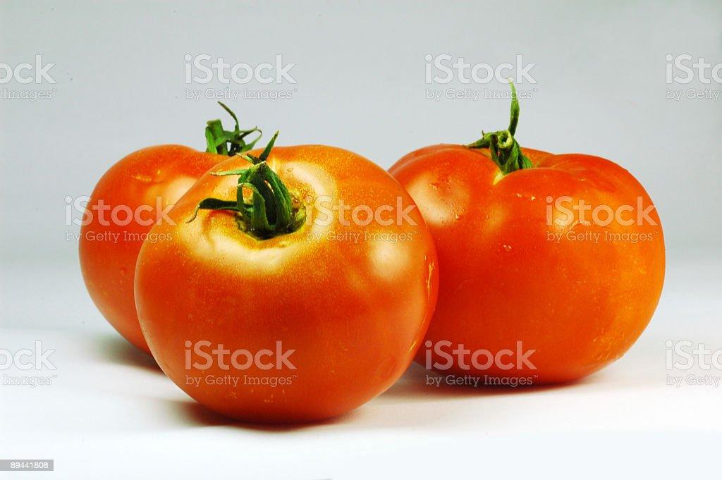 Fresh tomatoes royalty-free stock photo