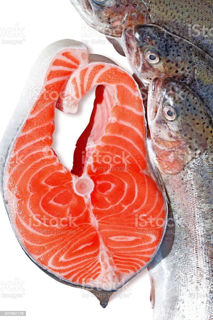 fresh trout and salmon slice on white background stock photo