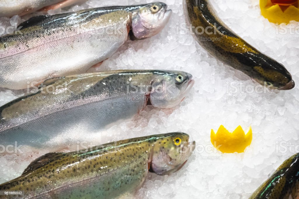 Fresh trouts displayed on ice stock photo