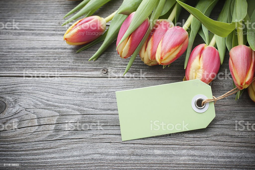 fresh tulips and tag stock photo