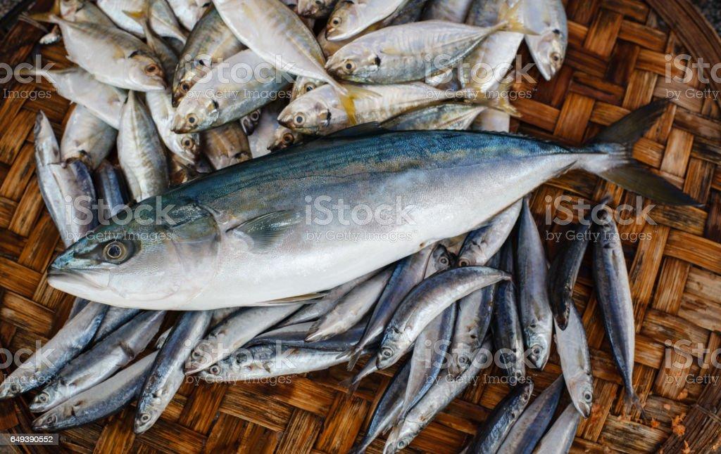 Fresh tuna fish in market. Seafood background. stock photo