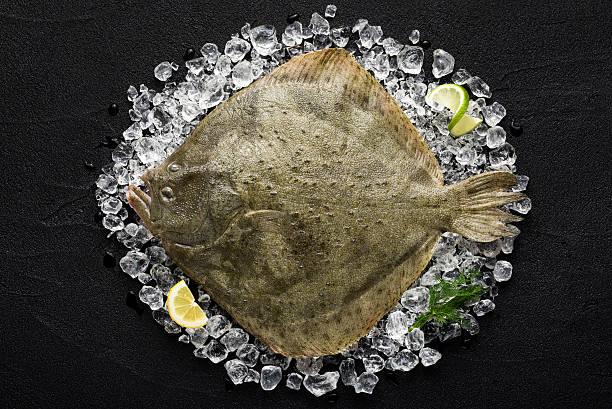 rodaballo pescado fresco sobre hielo en una mesa negra stone - rodaballo fotografías e imágenes de stock