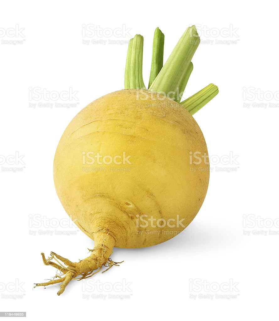 Fresh turnip isolated on white stock photo