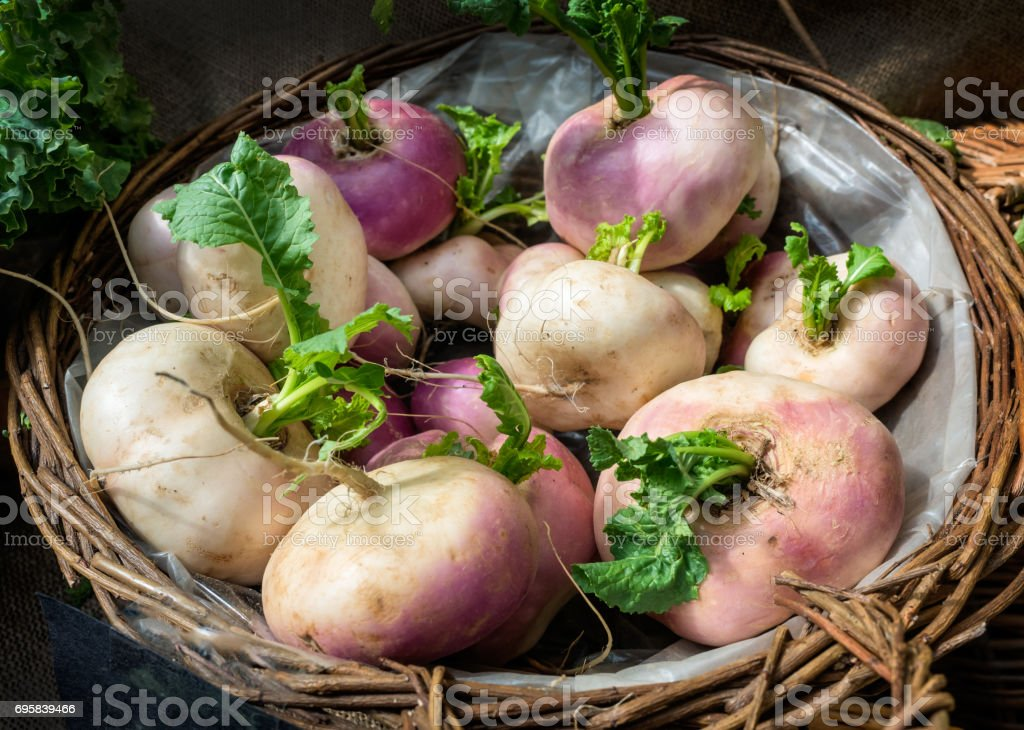Fresh turnips in a basket stock photo