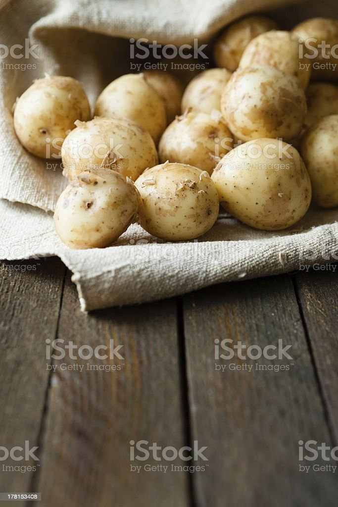 Fresh unpeeled baby potatoes royalty-free stock photo