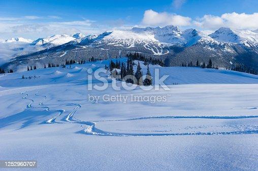 istock Fresh untracked powder at a ski resort 1252960707