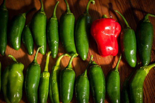 Fresh variety of many green peppers and one red pepper on the wooden background.