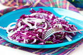 Fresh vegetable salad with red cabbage, kohlrabi, apple, cilantro, healthy dietary dish